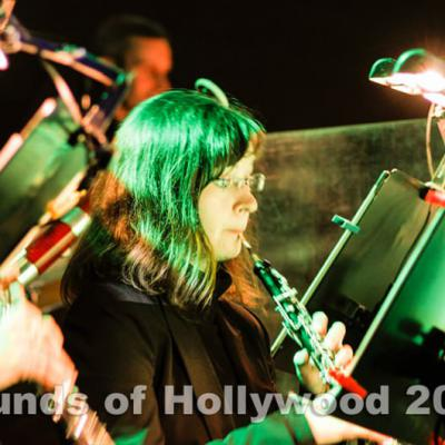 Sounds of Hollywood 2014